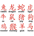 Chinese zodiac signs design vector image