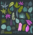 collection of tropical plants and abstract vector image