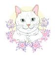 cute cat cute cat christmas greeting cardthe vector image vector image