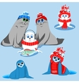 set of seals vector image