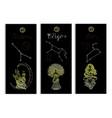 set with cancer leo and virgo zodiac symbols vector image