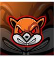 squirrel head esport mascot logo vector image vector image