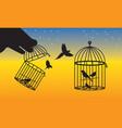 birds cage prison vector image vector image
