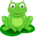 Cute Frog Cartoon Isolated vector image