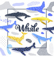 cute whales design childish marine background vector image