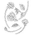 line art set roses flowers vector image
