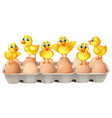 six chicks standing on eggs vector image vector image