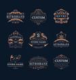 vintage store logos set vector image vector image
