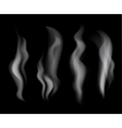 Smoke set on black background vector image vector image