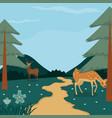 beautiful forest landscape vector image