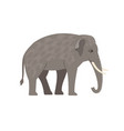 cartoon grey elephant vector image