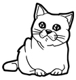 Cat Coloring Page for kid vector image vector image