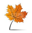 hello autumn autumn leaf autumn banner vector image vector image