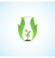 Pitcher and plants vector image