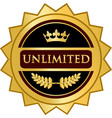 unlimited gold icon vector image vector image