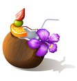 A refreshing coconut juice vector image