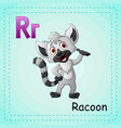 animals alphabet r is for raccoon vector image