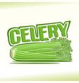 celery still life vector image vector image