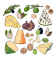 hand drawn different kinds of cheese nuts olives vector image