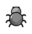 spider insect animal and dangerous symbol icon vector image vector image