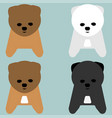 puppy or pup orange grey white colour vector image