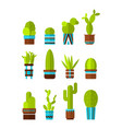 set of cacti succulents flat color icons vector image
