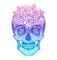 Human skull tribal styleTattoo blackwork hand vector image