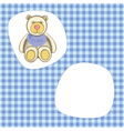 bear for baby boy vector image vector image