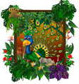 beautiful peacock in forest with tropical plant vector image vector image