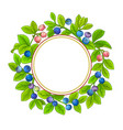 bilberry branches frame on white background vector image vector image