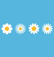camomile round icon set white daisy chamomile vector image vector image