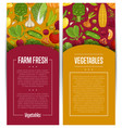 fresh vegetable farming flyers set vector image vector image