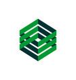 hexagon green box plaited logo template vector image