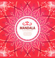 mandala square red background decor vector image