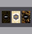 set of luxury flyer brochure card design vector image vector image