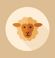 sheep icon animal head vector image vector image
