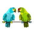two lovely parrots on white background vector image
