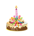 Birthday cake and candle vector image