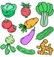 doodle of vegetable set object vector image vector image