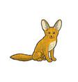 fennec fox sketch vector image vector image