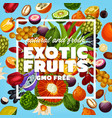 gmo free exotic fruits and berries vector image vector image