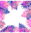 tropical exotic palm leaves pink and purple vector image