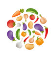 vegetables icon set in a round shape - potato vector image vector image