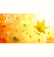 autumn blurred background with falling leaves vector image vector image