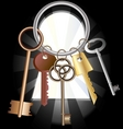 bunch of keys vector image vector image