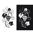 grapes decorative pattern vector image vector image