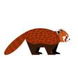 red panda character vector image