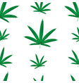 seamless pattern marijuana leaves cannabis vector image vector image
