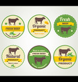 Badges beef organic product design template vector image