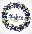Blueberry design vector image